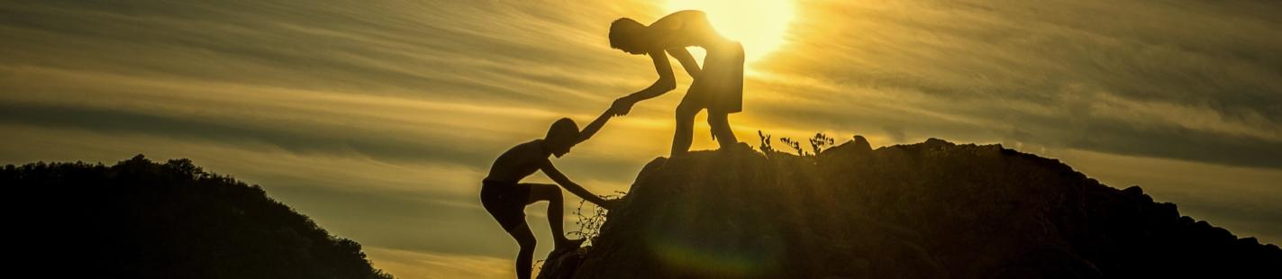 Partner Management, Revenue Sharing